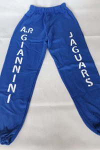 apg blue sweatpants